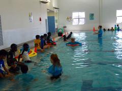harda-swim-year2013-240x180